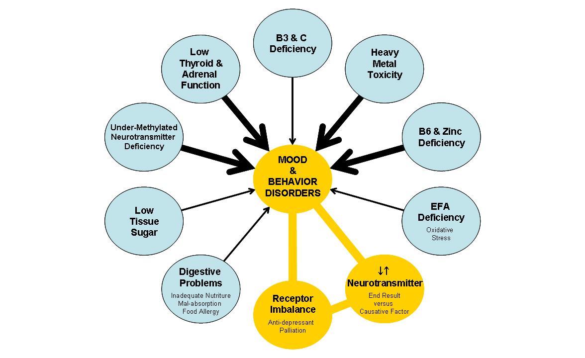 Causative Factors - Mood & Behavior Disorders